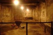Auschwitz (2008-09)