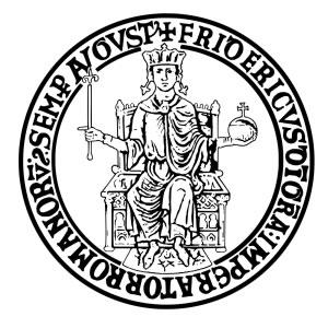 Nasce l'Università di Napoli
